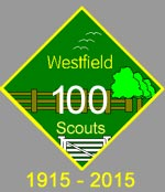 Scouts100years