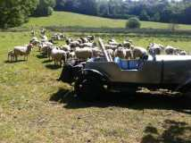 1929 Riley Wheel farm