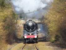 Steam train at Doleham