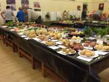 Horticultural Society - Autumn Show