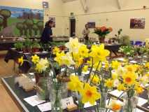 Horticultural Society Spring Show