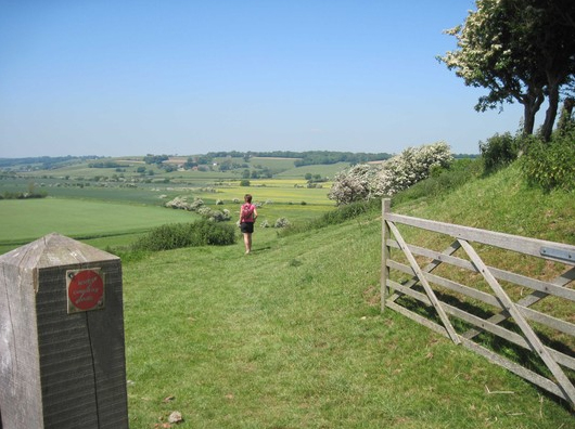 sussex walk